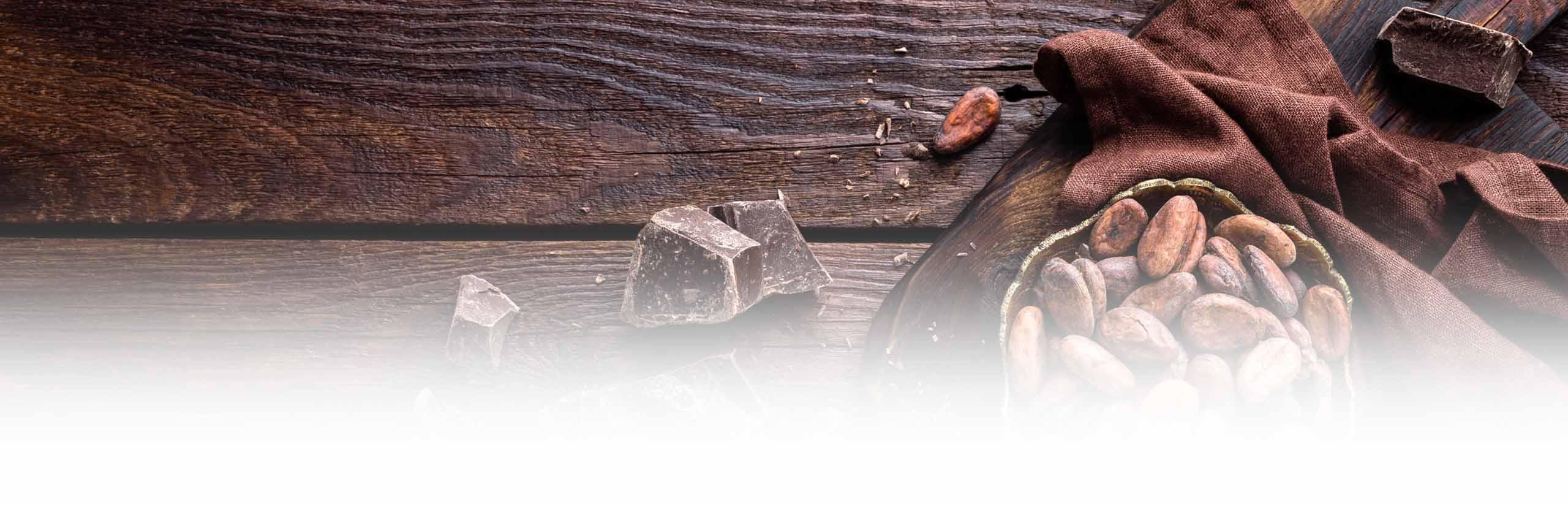 la route du cacao, Chocolaterie Mérimée, manoir Desmares, Lisieux, Calvados, Normandie